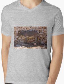 Donkey in the Shade Mens V-Neck T-Shirt