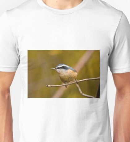 Red Breasted Nuthatch - Ottawa, Ontario T-Shirt