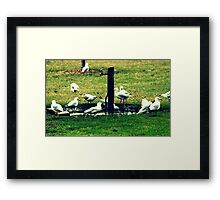 Meeting Place Framed Print