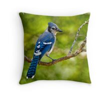 Blue Jay - Ottawa, Ontario Throw Pillow