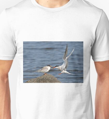 Feeding Time - Common Terns, Ottawa, Ontario T-Shirt