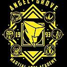 Angel Grove Martial Arts Academy MMPR Power Rangers by pierceistruth