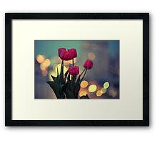 Tulips in twilight Framed Print