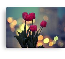 Tulips in twilight Canvas Print