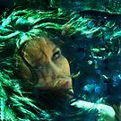 Mermaid Dreams - redo by Marny Barnes
