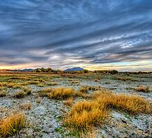 Dry Lake Bed - Color by Bob Larson