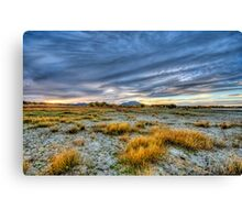 Dry Lake Bed - Color Canvas Print