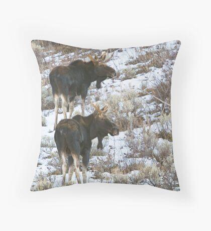 Double Bull Moose Throw Pillow