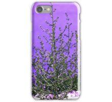 Purple Plant  iPhone Case/Skin