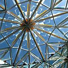 Conference Center Skylight  by Carin Fausett