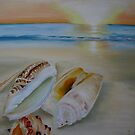 """Shells on beach""  by Taniakay"
