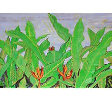 Thai leaves blowing in the Breeze. Photographic Print