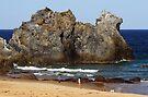Camel Rock at Bermagui by Darren Stones