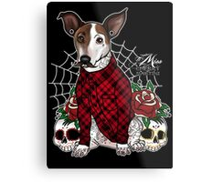 Monte the Mexican Metal Print