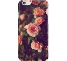 Roses #3 iPhone Case/Skin