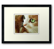With An Edge and Charm. Framed Print