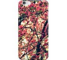 Cherry Blossom #2 iPhone Case/Skin