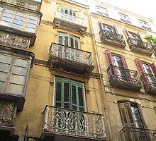 Windows of Malaga by Danger Cain