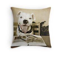 The Perfect Student Throw Pillow