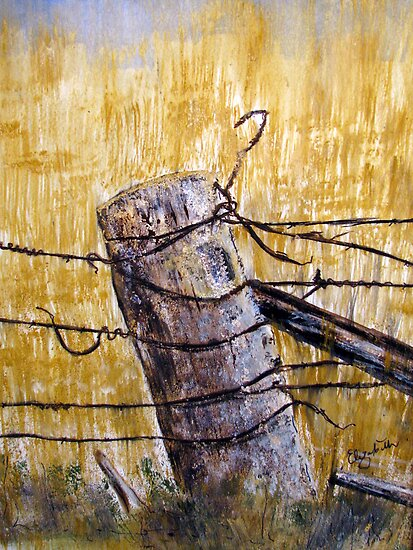 A lonely fence in Australia by Elizabeth Kendall