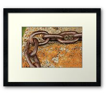 Chain and Lichen Framed Print