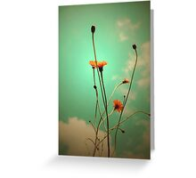 Vintage Weeds Greeting Card