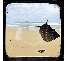 Longing to Return - TTV Photographic Print