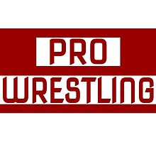'PRO WRESTLING' by NAWrestling