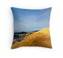 Falkland Islands Lighthouse Throw Pillow