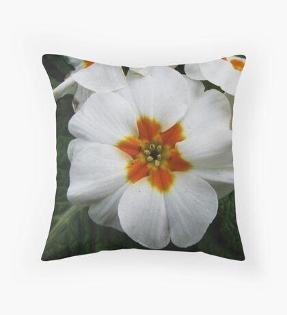 A white beauty Throw Pillow