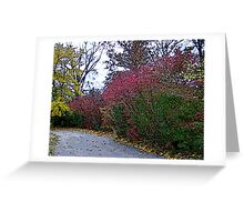 Beautiful Autumn Walk Greeting Card