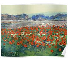 Poppies in Flanders Fields Poster