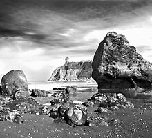 Abbey Island at Ruby Beach by Bryan Peterson