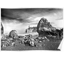 Abbey Island at Ruby Beach Poster
