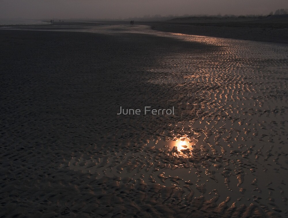 FOLLOW THE LIGHT by June Ferrol