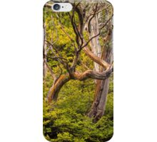 Alpine Gums with Fagus iPhone Case/Skin