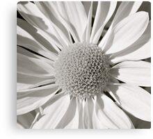 flower bw Canvas Print