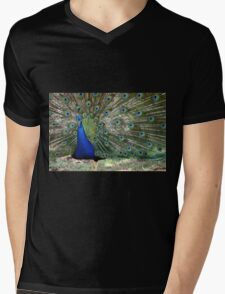 Proud as a Peacock Mens V-Neck T-Shirt
