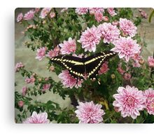 Wings and Flowers Canvas Print