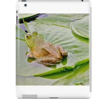 Bullfrog on a lily pad... iPad Case/Skin