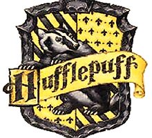 Hufflepuff 6 by Serdd