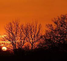 Orange Winter Sunrise - Chelmsford, UK by MichelleRees