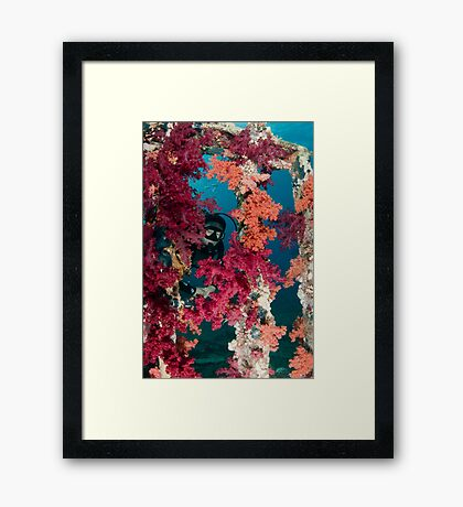 Mike at Yolanda wreck Framed Print
