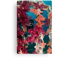 Mike at Yolanda wreck Canvas Print