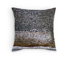 Snow Geese #2 Throw Pillow