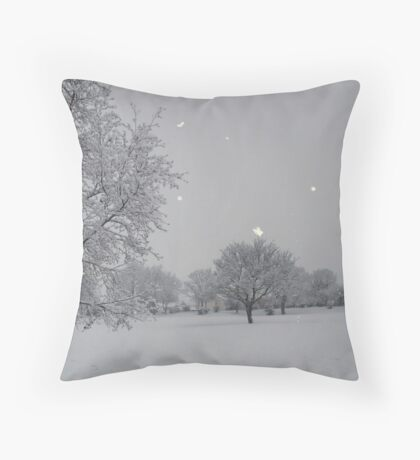 Overnight Snow Throw Pillow