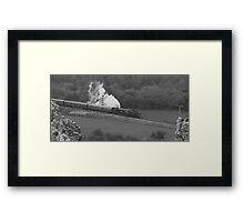 Swanage Steam Train Railway Framed Print