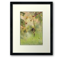 You Can Go Now Framed Print