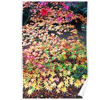 Autumn Kaleidoscope Poster