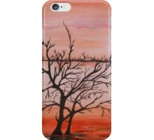 Wetlands  iPhone Case/Skin